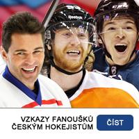 Vzkazy fanoušků českým hokejistům